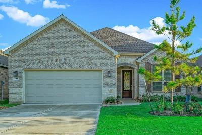 Single Family Home For Sale: 396 Connemara Drive