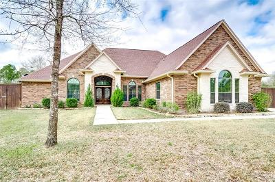 Conroe Single Family Home For Sale: 11703 Canyon Court
