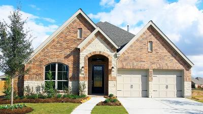 Katy Single Family Home For Sale: 6810 Monarch Falls Lane
