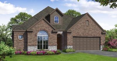 Rosenberg Single Family Home For Sale: 4823 Windy Poplar Trail