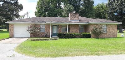 Single Family Home For Sale: 101 Vickie Lane