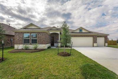 Manvel Single Family Home For Sale: 41 Royal Rose Drive