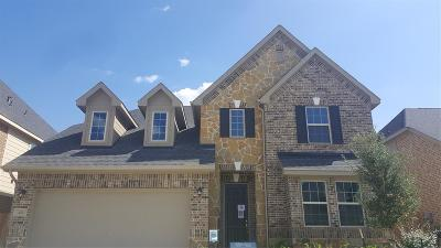 Tomball Single Family Home For Sale: 123 Covington Court