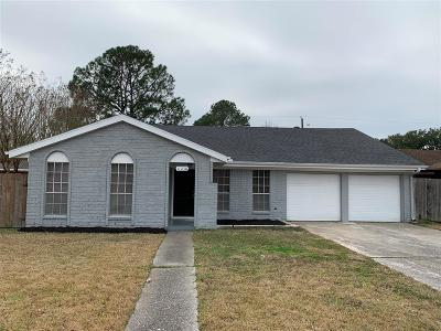 Houston Single Family Home For Sale: 11230 Sageview Drive