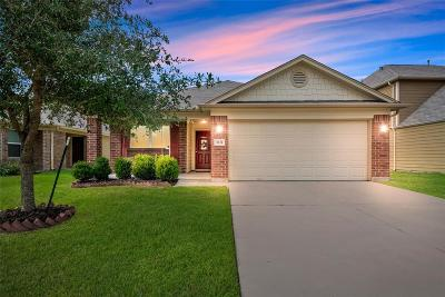 Katy Single Family Home For Sale: 3131 Thicket Path Way