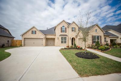 Fulshear Single Family Home For Sale: 28326 Sparkling Brook Lane