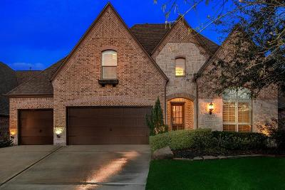 The Woodlands Single Family Home For Sale: 11 Crystal Canyon Place