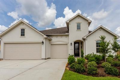 The Woodlands Single Family Home For Sale: 16 Snowdrop Lily Drive
