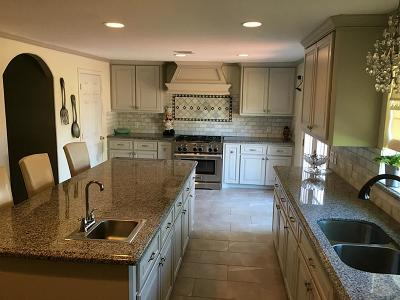 Houston Single Family Home For Sale: 13209 Ralph Culver Drive