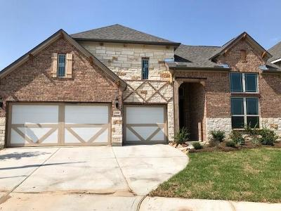 Katy Single Family Home For Sale: 23306 N Briarlilly Park Circle