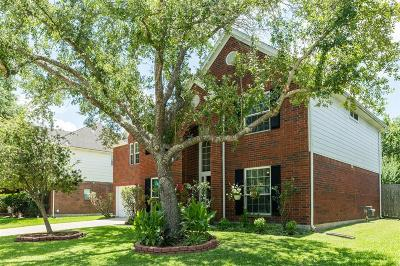 Friendswood Single Family Home For Sale: 16202 Leigh Canyon Drive