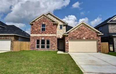 Houston Single Family Home For Sale: 15016 Briarcraft Drive