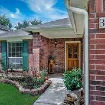 Katy Single Family Home For Sale: 3507 Tealwater Court