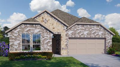 Tomball Single Family Home For Sale: 25802 Balsamwood Drive