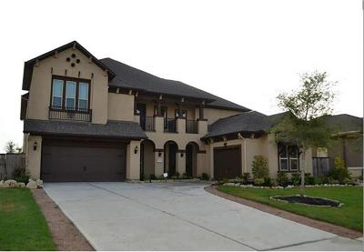 Katy Single Family Home For Sale: 27415 Ashford Sky Lane