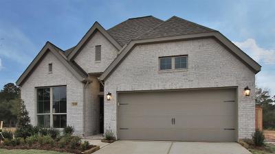 Tomball Single Family Home For Sale: 24415 Morningside Terrace Court
