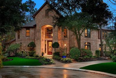 The Woodlands Single Family Home For Sale: 44 Dovewood Place