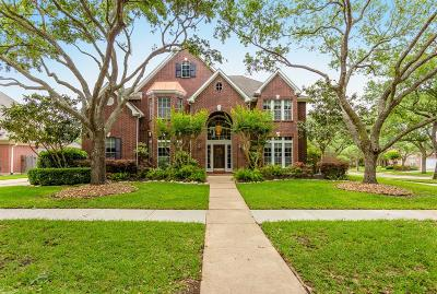 Sugar Land Single Family Home For Sale: 3802 Palmer Court