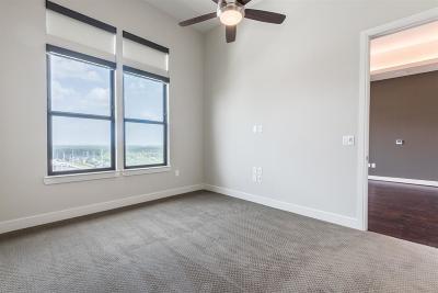 Harris County Rental For Rent: 2311 Mid Lane #817