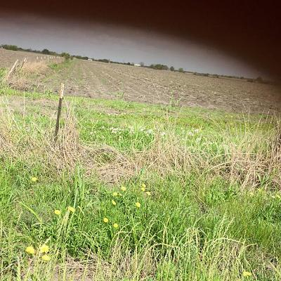 Residential Lots & Land For Sale: Tract 4 Maler Road