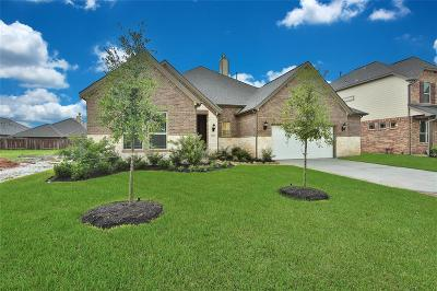League City Single Family Home For Sale: 3066 Bellflower Pass Lane