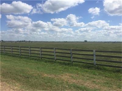 Wharton County Farm & Ranch For Sale: 16301 S Fm 266