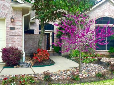 Houston Single Family Home For Sale: 6830 Tournament Drive