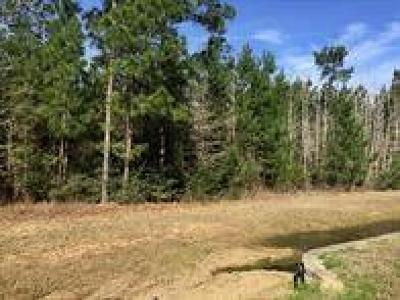 Montgomery Residential Lots & Land For Sale: 13142 Royal Hill Court