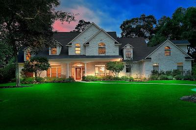 Tomball Single Family Home For Sale: 9218 Stratford Place