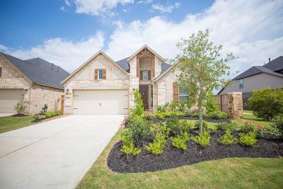Fulshear Single Family Home For Sale: 28315 Long Mill Lane