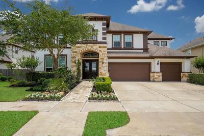 Sugar Land Single Family Home For Sale: 3011 Dahlgren Trail