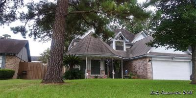 Spring Single Family Home For Sale: 2710 Shady Bayou Lane