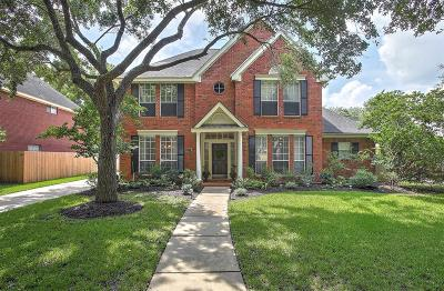 Sugar Land Single Family Home For Sale: 3222 Vista Lake Drive