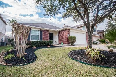 Tomball Single Family Home For Sale: 20203 Glacier Falls Drive