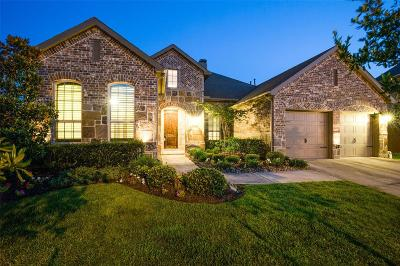 Friendswood Single Family Home For Sale: 2326 Dolan Springs Lane