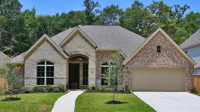 New Caney Single Family Home For Sale: 18860 Collins View Drive
