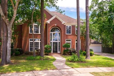 Friendswood Single Family Home For Sale: 707 Hidden Oak Lane
