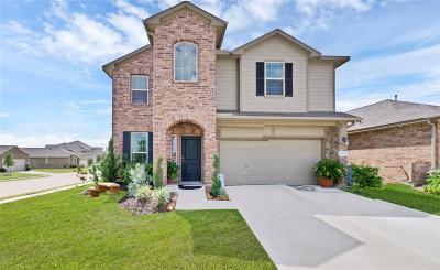 Houston Single Family Home For Sale: 3503 Cayo Hueso Lane
