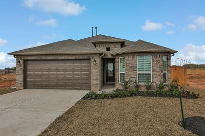 Fulshear Single Family Home For Sale: 32706 Timber Point Drive