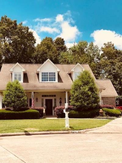 Baytown Single Family Home For Sale: 7130 Baron Ridge Drive