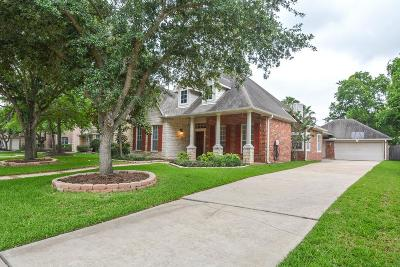 Sugar Land Single Family Home For Sale: 1410 Shady Valley