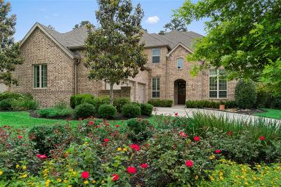 The Woodlands Single Family Home For Sale: 231 Greylake Place