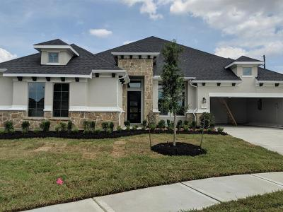 Katy Single Family Home For Sale: 1415 Windy Thicket Lane