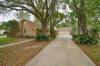 Houston Single Family Home For Sale: 12419 Briar Forest Drive