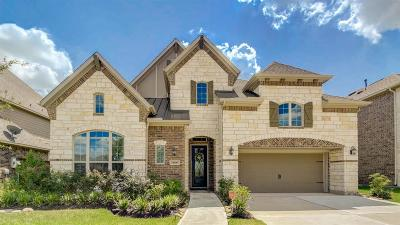 Pearland Single Family Home For Sale: 11806 Cascade Falls Lane
