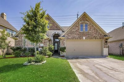 Pearland Single Family Home For Sale: 13516 Mooring Pointe Drive
