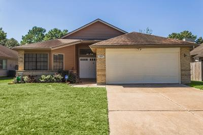 Houston Single Family Home For Sale: 15847 Meadow Village Drive