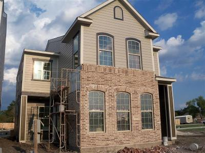 Houston Single Family Home For Sale: 12453 Malachite Way