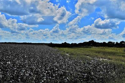 Wharton County Farm & Ranch For Sale: County Rd 209