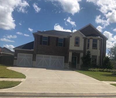 League City Single Family Home For Sale: 1502 Palo Duro Canyon Drive